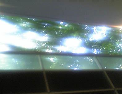 天井2M.jpg